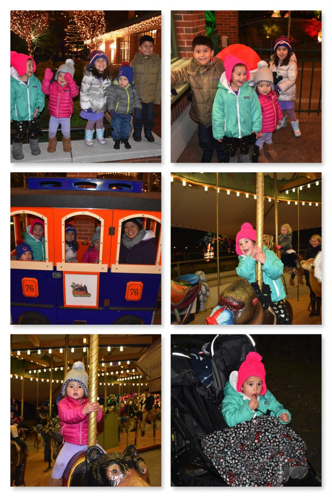 zoo-lights-2016